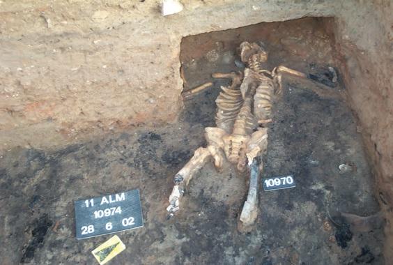 Esqueleto con las piernas mutiladas hallado en la Almoina